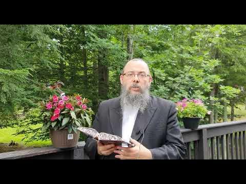 347 Mit tehetünk mi ma a Szentélyért? – Oberlander Báruch (nyílt és zárt paragrafus a Tórában)