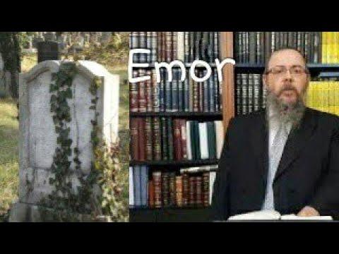 305 Visszahozni a zsidósághoz – Oberlander Báruch (Emor hetiszakasz, kohének és a halottak)