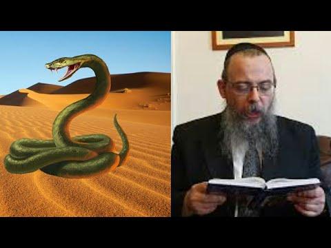 341 A természet fölötti élet ára – Oberlander Báruch (Chukát hetisz., sivatag, manna, tüzes kígyók)