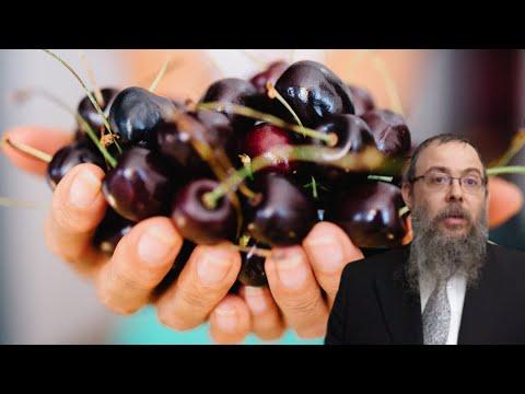392 Kisgyerek és a cseresznye – Oberlander Báruch (Isteni mértékkel adjon nekünk, közeleg az újév)